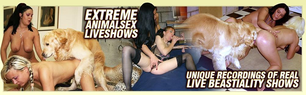 Dog Sex Live