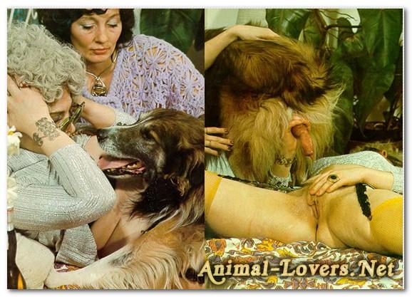 Bodil Joensen - Animal Sex Pornstars - Animal Climax Pics
