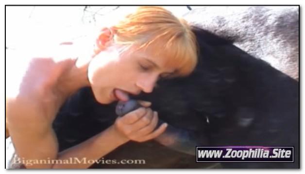 121 - Animal Sex Farm