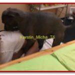 Zooskool - Kerstin - Micha T6