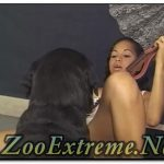 Shemales ZooSex_14